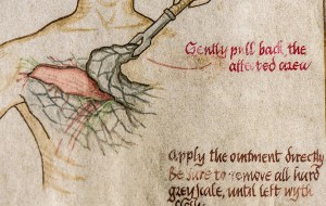 Detalle del libro de maestre Pylos