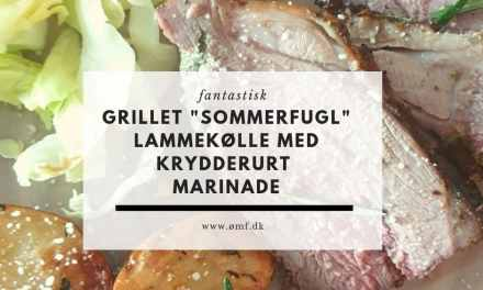 "Grillet ""sommerfugl"" lammekølle med krydderurter"