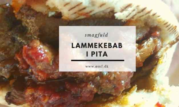 Lammekebab i pita