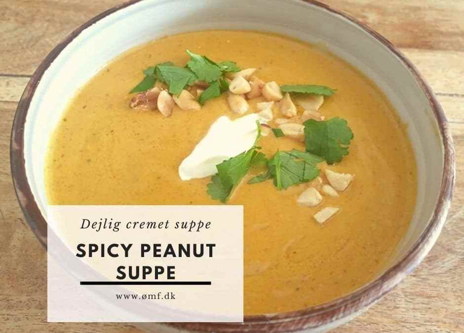 Spicy peanutsuppe