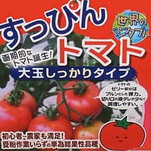 suppinn-tomato