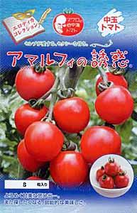 tomato_amalfi