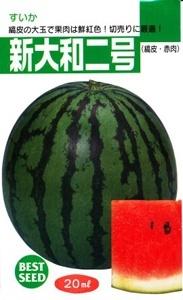 sinyamato2go