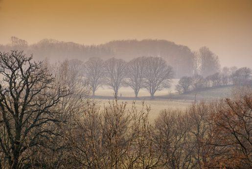 Langeland 2015 Vinter (16 of 30)