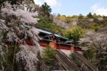 静岡浅間神社スポット