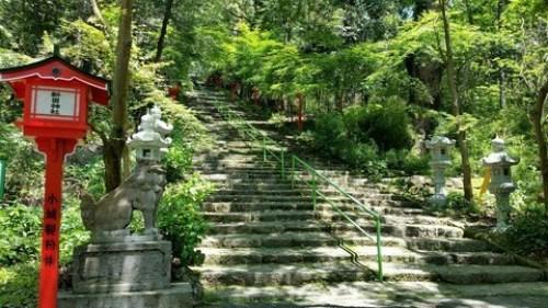 紫尾神社石段