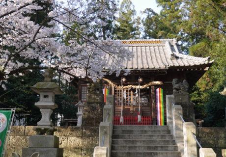 shimono_hoshinomiya