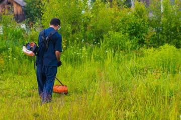 福岡市早良区 一軒家 庭の草刈り|えびす造園