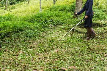 新宮町 一軒家 庭の草刈り|えびす造園