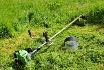 糸島市 一軒家 庭の草刈り|えびす造園