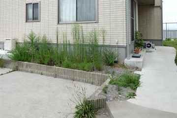 福岡市西区 一軒家 庭の草取り|えびす造園