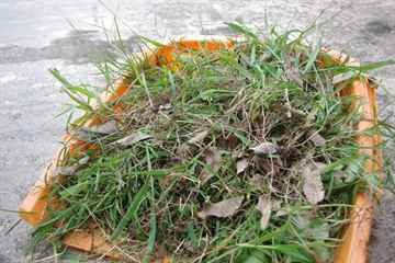 筑紫野市 一軒家 庭の草取り|えびす造園