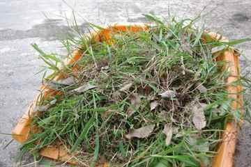 久山町 一軒家 庭の草引き|えびす造園