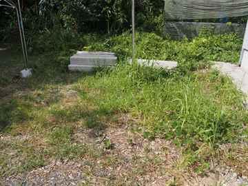 篠栗町 一軒家 庭の草抜き|えびす造園