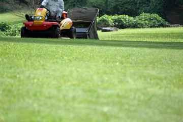 糸島市 一軒家 庭の芝の手入れ|えびす造園