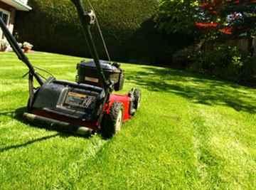筑紫野市 一軒家 庭の芝刈り|えびす造園