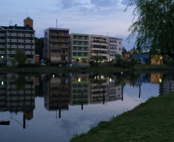 150418西の堤池2
