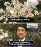 【お花畑】安倍総理「景気は七分咲きぐらいかな」ネット民「去年も同じこと言うとった」「これで七分じゃ庶民は花見できん」