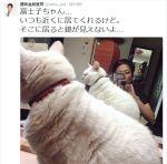 【選挙の夏】蓮舫氏は都知事選に出馬せず、予定通り参院選に出馬へ