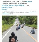 【印象的な写真】「森林を保護するために座り込む沖縄・高江の人々」