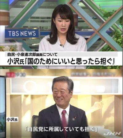 【ありやな】小沢一郎氏が政権奪取に意欲「進次郎氏、国のために国民のために、いいと思ったら担ぎます」⇒ネットは非難殺到