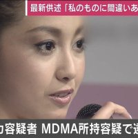 【提言】日本の報道が力を入れるべきは「沢尻よりも桜の会」国民はいつまでもメディアに踊らされてはいけない