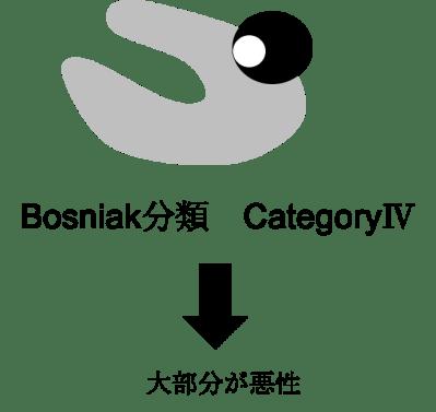bosniak classification category4