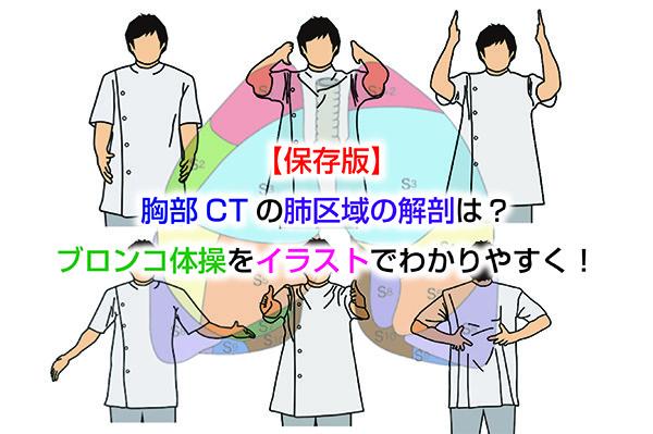 【保存版】胸部CTの肺区域の解剖・覚え方は?ブロンコ体操でわかりやすく!