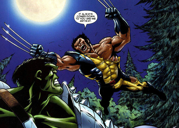 Wolverine vs The Hulk