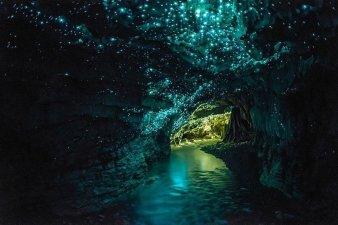 cueva waitomo y sus famosos gusanos luminosos, nueva zelanda