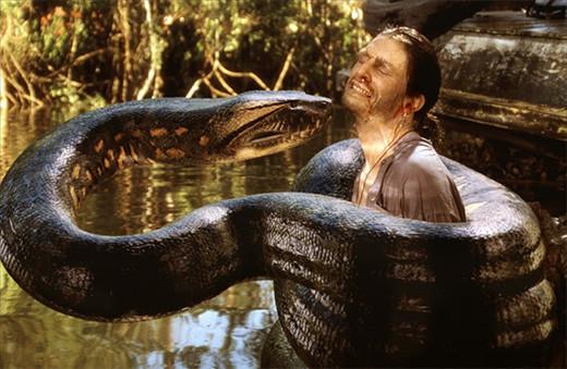 anaconda-salome-boa-hancock