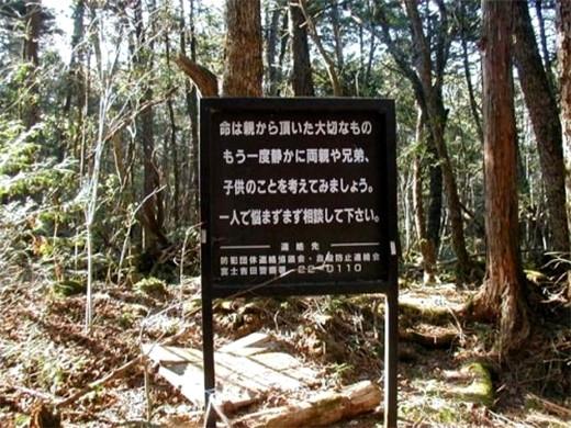 cartel-Aokigahara-bosque-suicidios