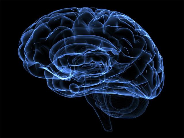 cerebro-azul-humo