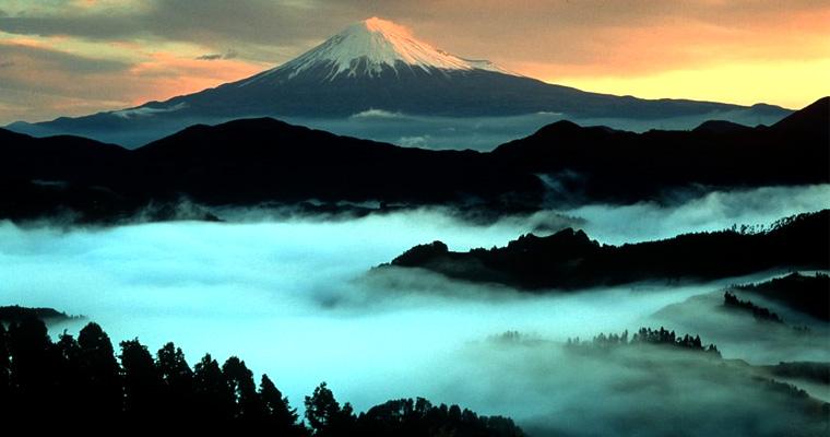 monte-fuji-Aokigahara-bosque-suicidios