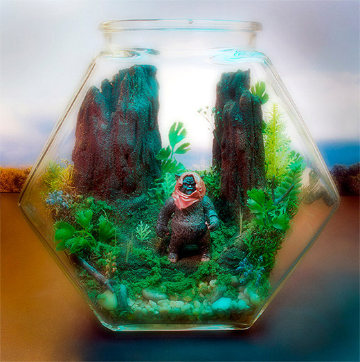 terrario-star-wars-diorama-botella-ewok-2