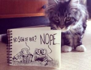 caricatura-cazadores-gato-real-troqman