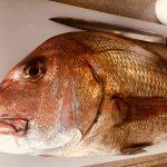 2018/02/12 寿司会開催 マダイ、ブリ 急募!釣り魚買取り 連絡ください。