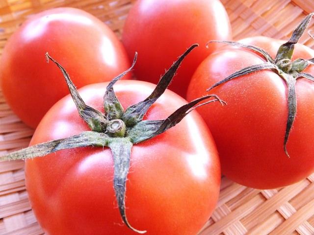 塩トマト 栄養 効果 効能