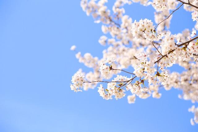 春うらら 意味 時期