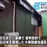 【1万株】マリファナ栽培容疑で東組幹部 土井良一容疑者らを逮捕