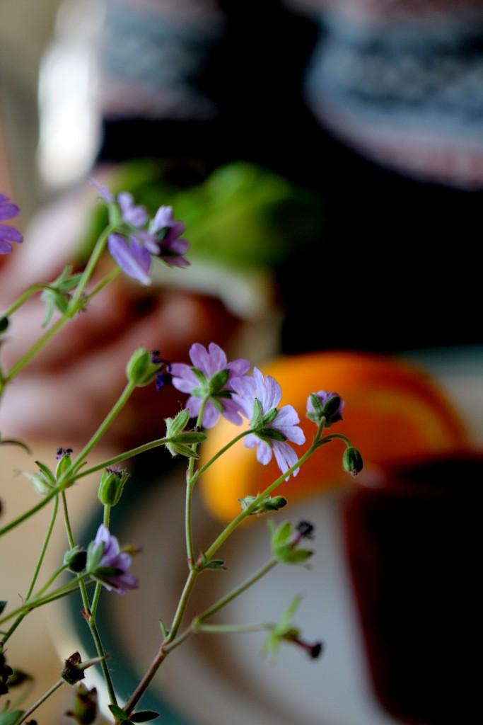 blomster på morgenmadscafeen