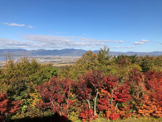 北海道の日本夜景遺産認定地、岩内町の円山展望台のライトアップが始まりました