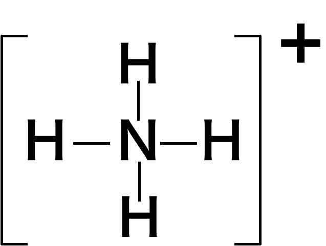 アンモニウムイオン