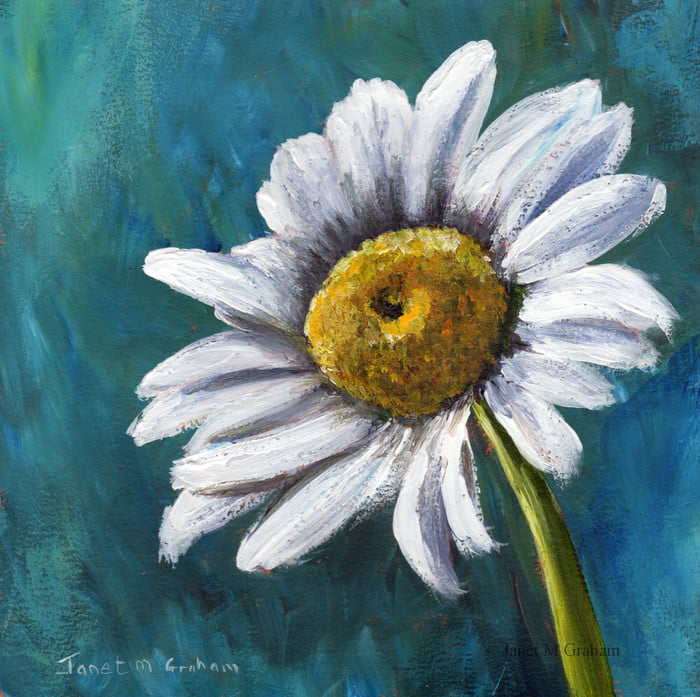 Daisy Original Floral Acrylic Painting by Janet M Graham (hi res)