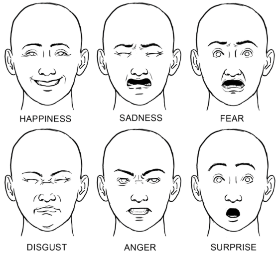 6 basic emotions