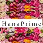 HanaPrime(ハナプライム)クーポンコード・キャンペーン