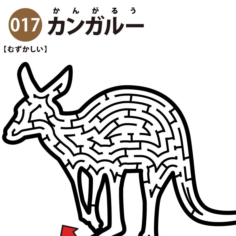 【迷路】カンガルー(難しい)アイキャッチ