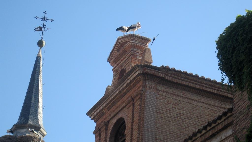 Alcalá de Henares: 20 años como Patrimonio de la Humanidad