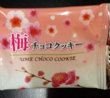 KNGW君 和歌山のお土産 「梅チョコクッキー」