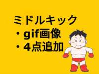 「gif画像」追加【田村潔司】左ミドル【シンプルに見て覚える格闘技】